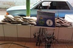 PMA autua tres pessoas e apreende 140 kg de pescado no MS
