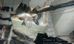 PMA combate caca submarina no lago de serra da mesa em Goias 2
