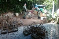 PMA deflagra operacao para coibir crimes ambientais no Parana 2