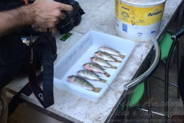 PMA deflagra operacao para combater pesca predatoria no Lago Paranoa-DF 2