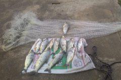 PMA flagra pesca com redes em local proibido no Rio Aquidauana em MS