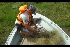 PMA flagra pesca ilegal e apreende redes e pescado no Rio Aracatuba-SP 2