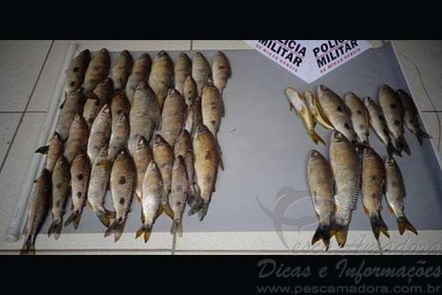 PMA flagra pesca predatoria durante a piracema no Rio Grande em MG