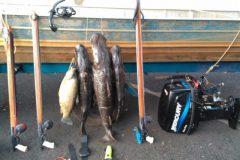 pma-flagra-pesca-subaquatica-ilegal-e-prende-dois-no-rio-grande-em-sp-2