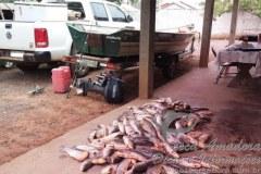 PMA prende 11 pessoas com 240 kg de pescado ilegal no MS 2