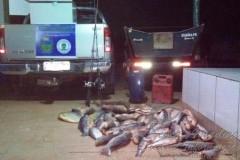PMA prende 11 pessoas com 240 kg de pescado ilegal no MS