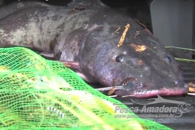 PMA prende 9 por pesca ilegal em area de preservacao em Uberlandia-MG 2