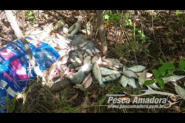 pma-prende-dois-com-700-metros-de-redes-e-100-kg-de-pescado-ilegal-em-goias-4