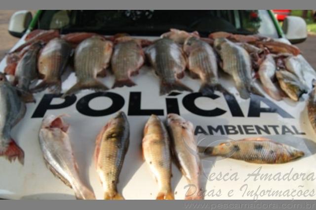 PMA prende dois por pesca predatoria no lago de Itaipu-PR 2