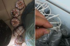 pma-prende-duas-pessoas-por-pesca-com-bomba-na-bahia-4