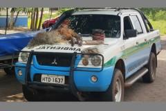 PMA prende homem por pesca predatoria em Navirai-MS