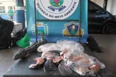 PMA prende homem por transporte ilegal de pescado e carne de animal silvestre no MS