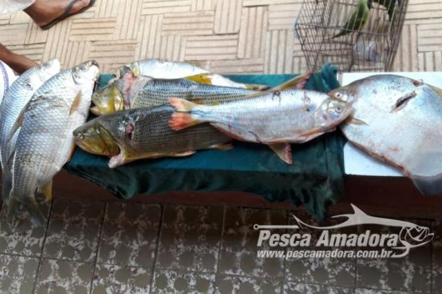 pma-prende-quatro-pessoas-por-caca-e-pesca-ilegal-em-joao-pinheiro-mg-2