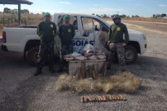 PMA reforca a fiscalizacao de pesca nos rios do estado de Goias
