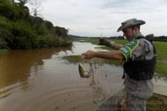 PMA retira 1000 m de redes e liberta 35 peixes na barragem de Ernestina no RS