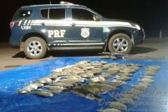 PRF apreende pescado ilegal em Mato Grosso