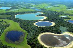 pantanal-biodiversidade