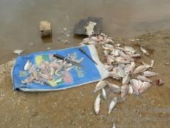 Patram encerra fiscalizazao no Rio Grande do Sul e apreende materiais ilegais de pesca 2