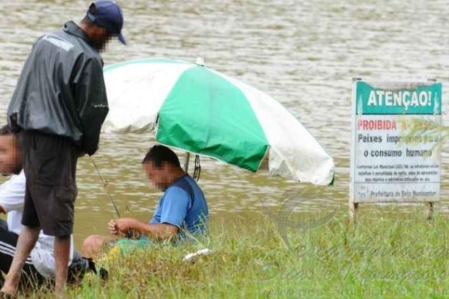 Peixes contaminados sao vendidos ilegalmente em Belo Horizonte