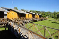 Pesca Esportiva atrai turistas de diversas regioes do pais para Rondonia 7
