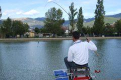Pesca de tilapia em pesqueiro