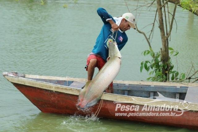 pesca-do-pirarucu-em-tocantins