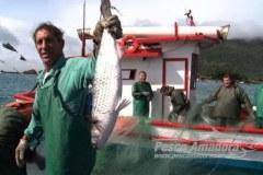 Pesca ilegal em 2015 motivou proibicao das licencas industriais em SC 2