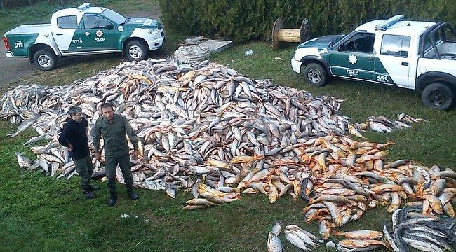Pescado apreendido na Argentina