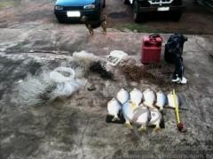 Pescado e outros materiais de pesca apreendidos no MS