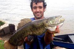 Pescador esportivo recebe certificado da IGFA ao fisgar traira de 4.250 kg e 63 cm no Parana 3