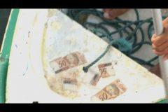pescadores-fisgam-cedulas-de-50-e-100-reais-em-orla-do-rio-de-janeiro