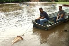 Pesquisadores monitoram reproducao de peixes no Rio Mogi-Guacu-SP
