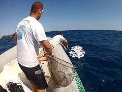 Petrechos de pesca a deriva recolhido por ambientalistas em Santos (Foto: Divulgação / Fundação Florestal)