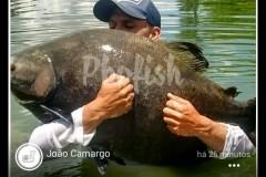Phofish - Rede social de pesca 5
