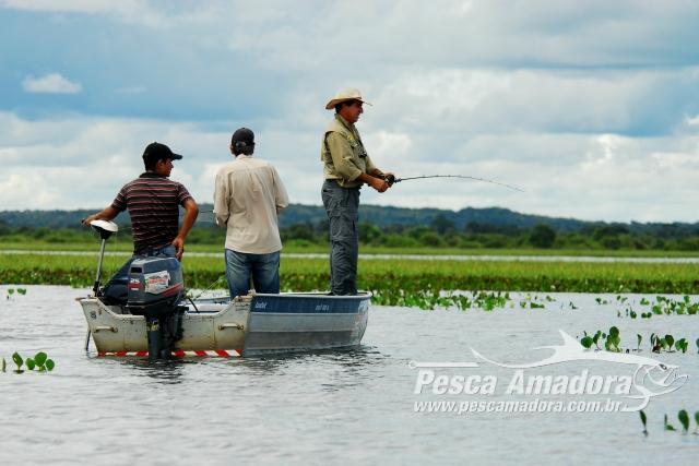 Piracema - Periodo de defeso - Pesca Esportiva