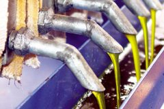 Piscicultores transformam oleo residual de peixes em biodiesel no Ceara 3
