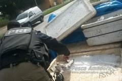 Policia Rodoviaria Federal apreende 243 kg de pescado ilegal no Maranhao