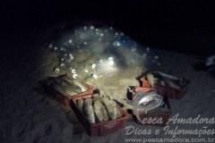 Policia apreende redes e pescado ilegal em Balneario Camboriu