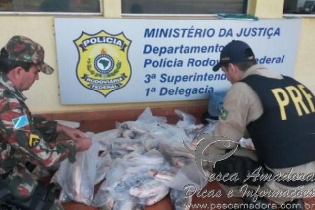 Policia rodoviaria federal apreende 117 kg de pescado ilegal no MS