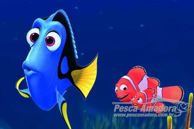 Procurando Dory - Sobrepesca de peixes de corais de recife 2