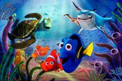 Procurando Dory - Sobrepesca de peixes de corais de recife