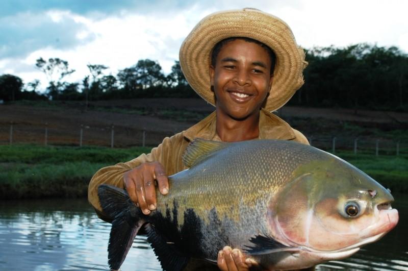 Produtores de peixes em tanques rede comemoram instalacoes em Savador