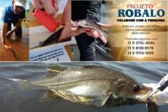 Projeto da Unesp de Registro capacita guias de pesca