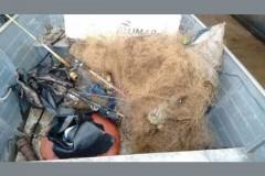 Quatro sao presos por pesca ilegal no rio Tibagi-PR