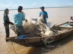 Redes e pescado apreendidos na Bahia