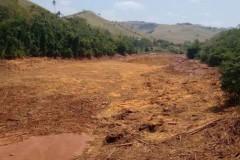 Rejeitos de mineradora devasta o Rio Doce em Minas Gerais 4