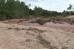 Represa transborda e mais de 150 toneladas de peixes morrem no PR 5