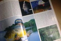 Revista Aruana reaparece em blog na internet 5
