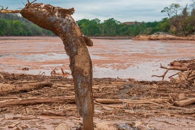 Rio Doce depois do desastre ambiental 10