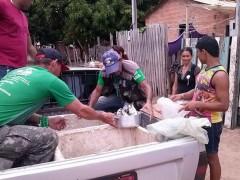Sema apreende peixes em feira no Para